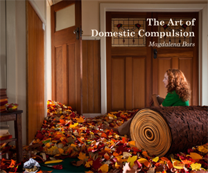 The Art of Domestic Compulsion 300