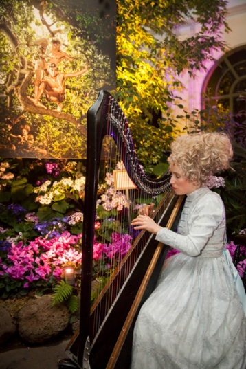 Elegant Harpist (photo © Stu Morley)