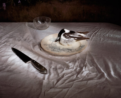HOME 21stC - © Marian Drew - 'Butcherbird with Knife' 2005